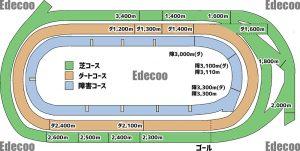 東京競馬場のコースの図を販売中!