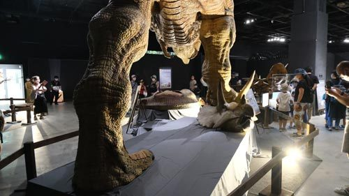 恐竜展2021の3