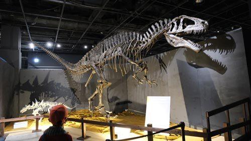 恐竜展2021の1
